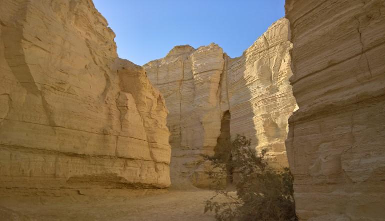Teaserbild zu Die Negev Wüste erleben
